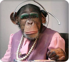 monkeyphone